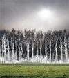 """Mostra fotografica """"Brevi Storie"""" di Andrea Miatto - Inaugurazione venerdì 28 novembre 2014 ore 18,30 c/o Foyer della Provincia di Treviso"""