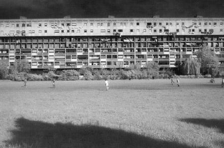 CROCI PAOLO - Parco Bissuola,VE - Quale futuro per i nostri giovani?- TERZO CLASSIFICATO