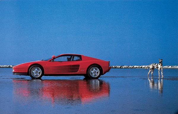 Testa rossa Ferrari